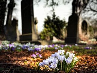 Corsi Cimiteriali a Marcianise